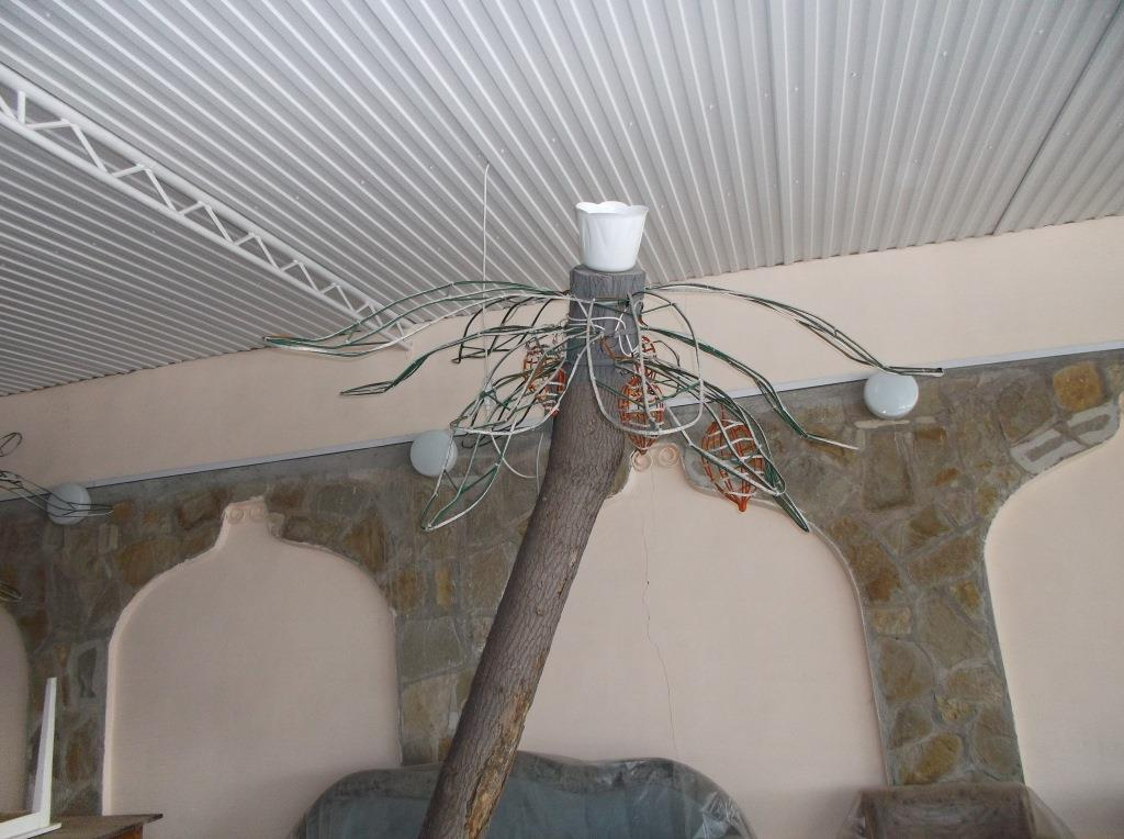 Место для кактуса